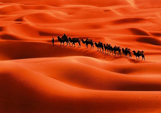 Di padang pasir yang ganas Rasulullah siang dan malam berjuang menegak kan kemanusiaan yang beradab bagi seluruh bumi