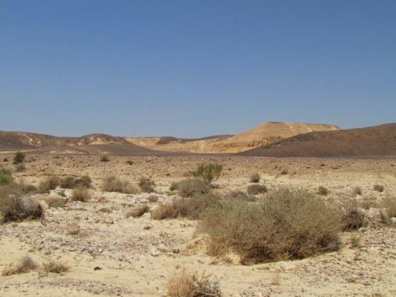 Padang gurun paran di sinai yang sepi hingga kini dan sejak dulu.tak ada revolusi dunia dari sini,yang ada tempat sepi yang mungkin di huni para jin